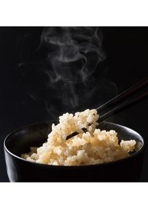 新米!平成30年度富山県産有機JAS認証コシヒカリ タイワ米玄米 5kg