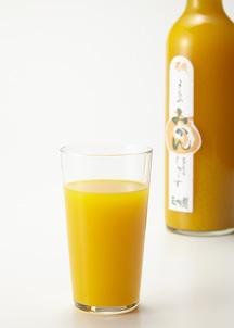 みかんジュース500ml×2本