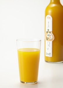 みかんジュース500ml×3本