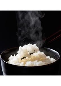 新米!平成30年度富山県産有機JAS認証コシヒカリ タイワ米無洗米 5kg
