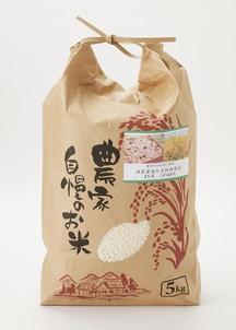 29年産新米【農家直送】新潟産減農薬減化学肥料 もち米「こがねもち」 精米 5kg