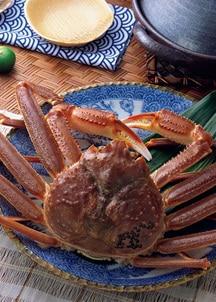 〈日本の極み〉石川県産 活 加納がに 1.6kg(4尾入)