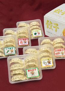 餃子6種セット(48個入)