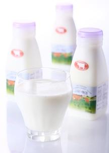 ジャージー牛乳10本セット