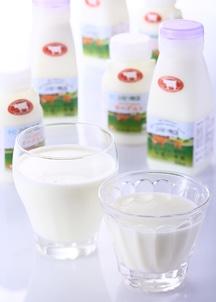ジャージー牛乳・ヨーグルトセット(牛乳5本・ヨーグルト5本)