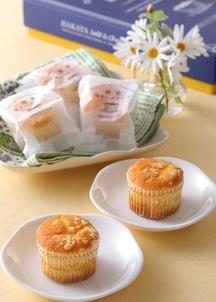 博多塩チーズケーキ 12個入