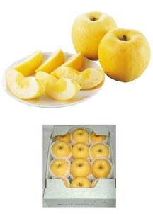【訳あり】りんごはるか約3kg(発送期間:1月21日~2月7日)